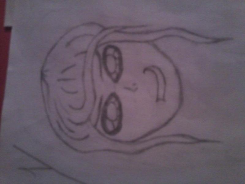 Mes premiers dessins Photo410