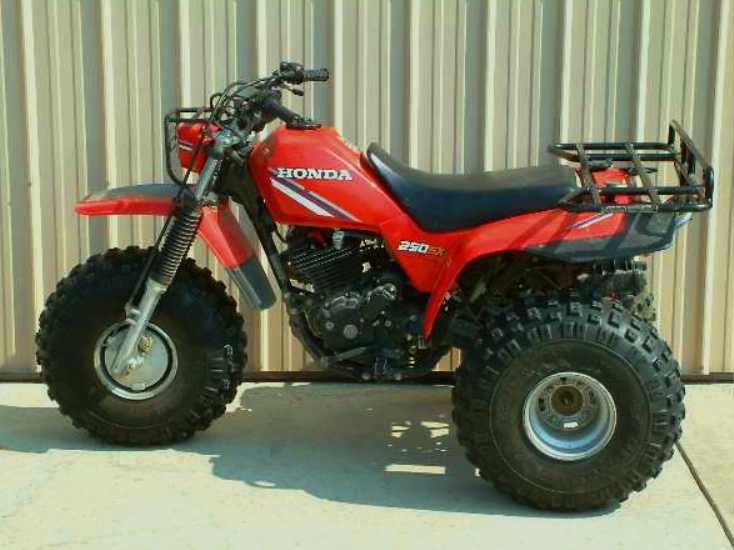 How long have you been riding? Honda_10