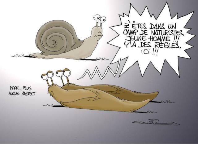 Les dessins humoristiques du Journal Sud Ouest sur l actualité du Médoc - Page 2 11577110
