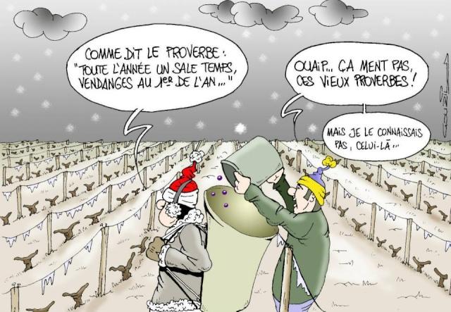 Les dessins humoristiques du Journal Sud Ouest sur l actualité du Médoc - Page 2 5644_110