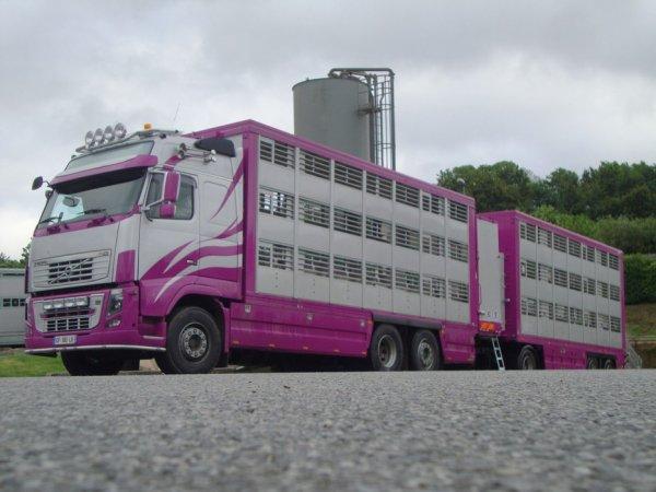 Scania R730 et le Volvo FH16 600 que je vois souvent vers chez moi 31054710