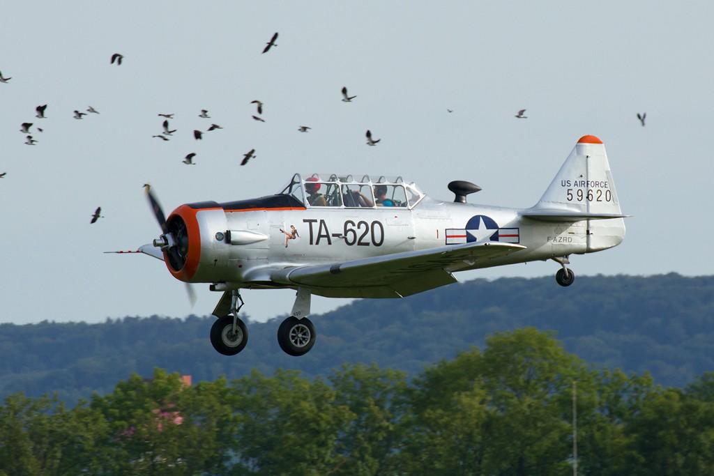Aérodrome de Reims Prunay Img_1710