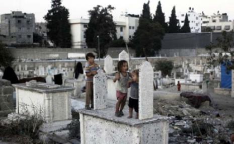يحدث في غزة .. الطفلة ردينة التي قتلت ودفنت بالسر ليلاً والسبب الفقر P22_2010