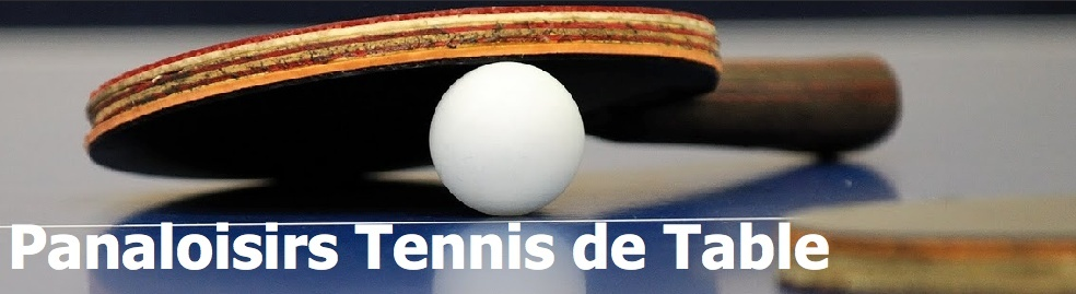 PANA LOISIRS Tennis de Table