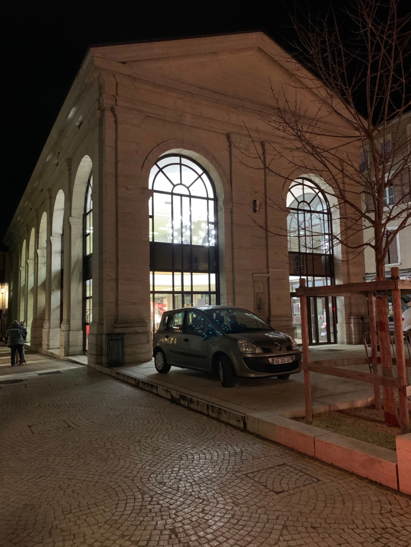 Expo à Bourgoin-Jallieu les 25 et 26 Janvier 2019 - Page 3 Img_6910