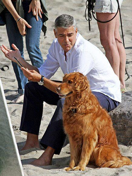 George Clooney George Clooney George Clooney! - Page 19 Gggg10