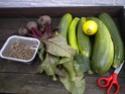 petite récolte du jour Dscn1516