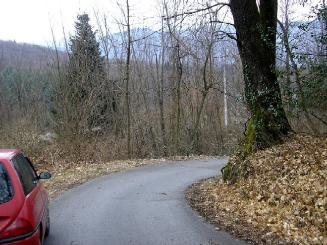 foto dal bosco, i nostri mezzi all'opera - Pagina 2 Foto_111