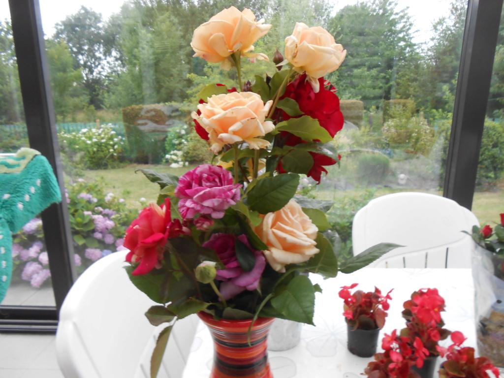 beau bouquet - Page 8 Dscn4248