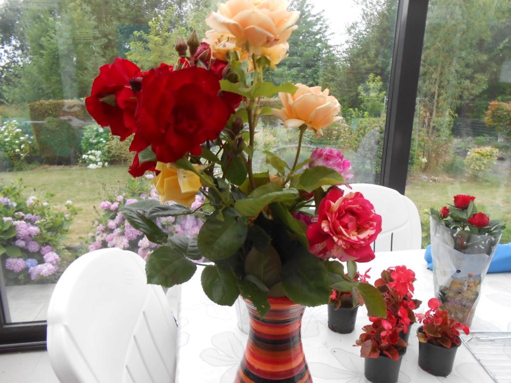 beau bouquet - Page 8 Dscn4249