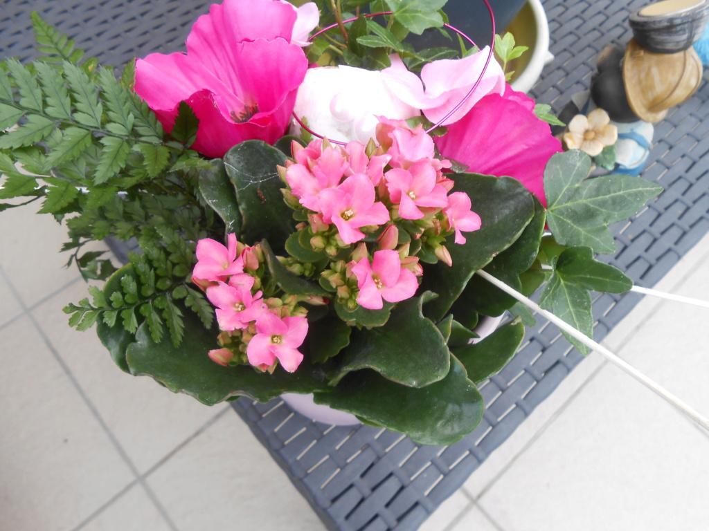 beau bouquet - Page 15 Dscn4916