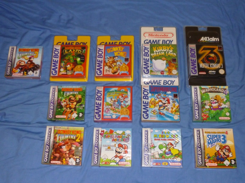 Collection GAME BOY de GBFan P1000513