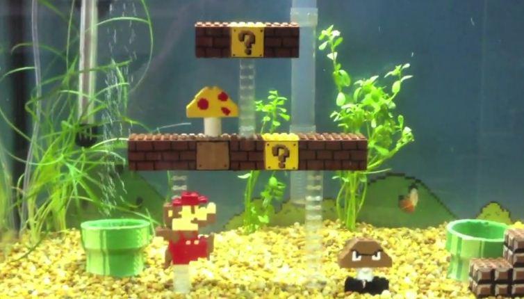 Decoration Aquarium Maison décorations fait maison pour aquarium
