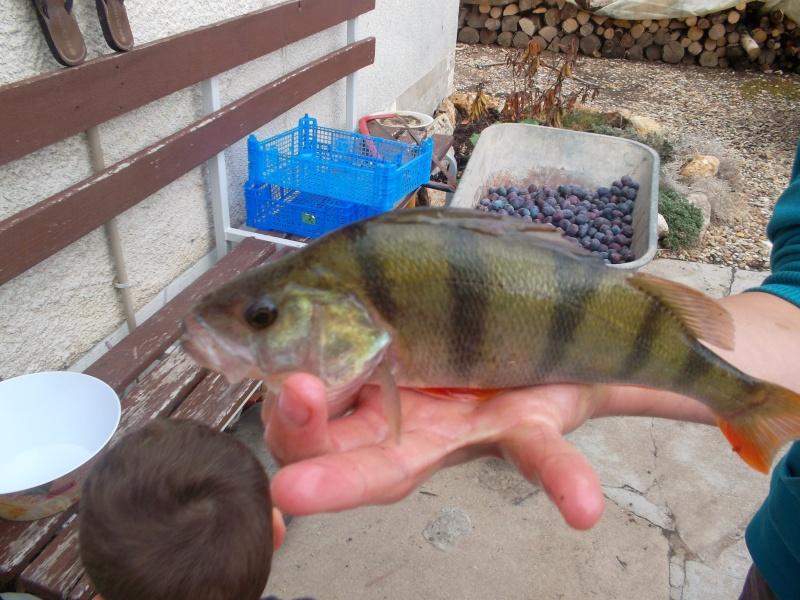 Pêche Sam_0521