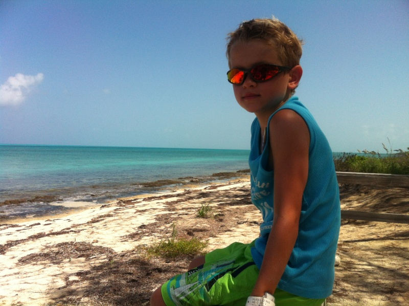 [TR] 3 semaines août 2013 en famille Universal-Disney cruise-WDW-Discovery Cove-Bush Garden-Seaworld - Page 5 Img_0516
