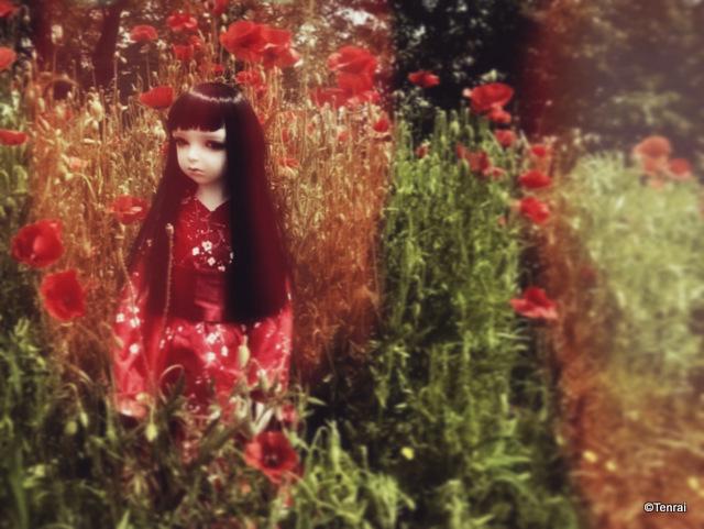 [Haunted] (Dollshe Amanda) Wayfaring Stranger (bas p34) - Page 31 A7263510
