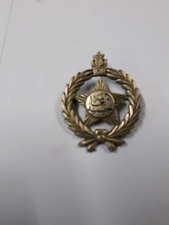 lot medailles et insignes divers a identifier, authentifier et estimer. 20191142