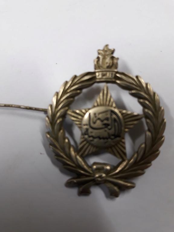 lot medailles et insignes divers a identifier, authentifier et estimer. 20191143