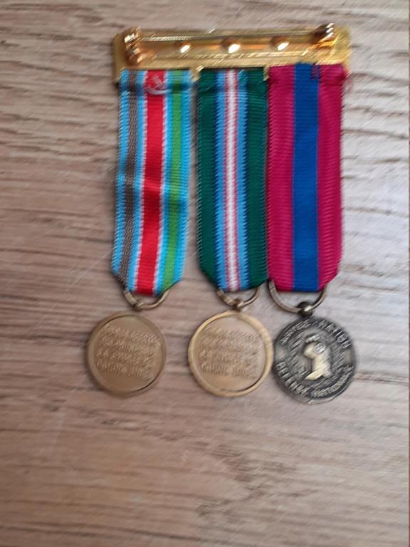 Médailles francaises en réduction sur barettes 20210245