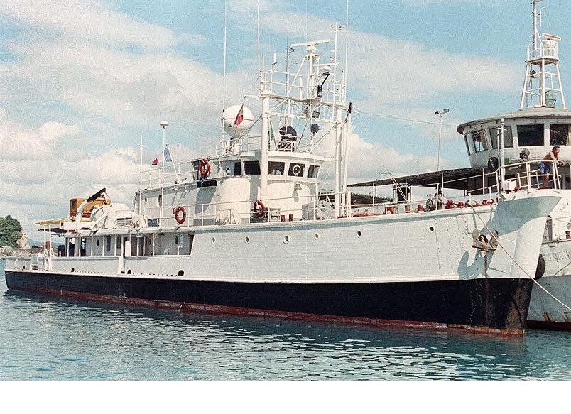 Calypso 1:50 dinamico autocostruito Immagi11