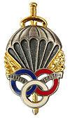insigne parachutiste francais  100px-10
