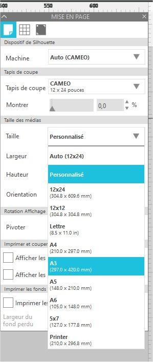 Problèmes SS version 4.3.258ss Simula10