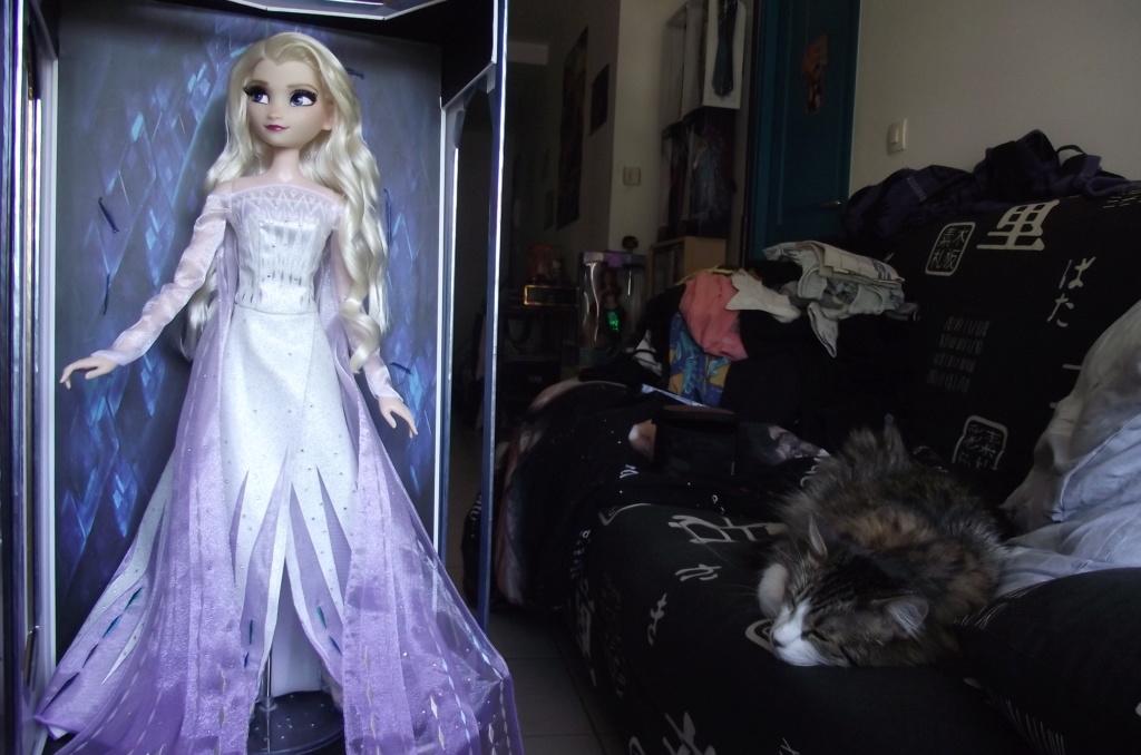 Nos poupées LE en photo : Pour le plaisir de partager - Page 24 Dscf2722