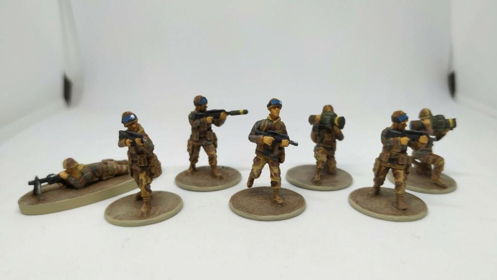 Opération Serval (Mali 2013) au 1/72e (wargame moderne, Caesar Miniatures) H8fhou10