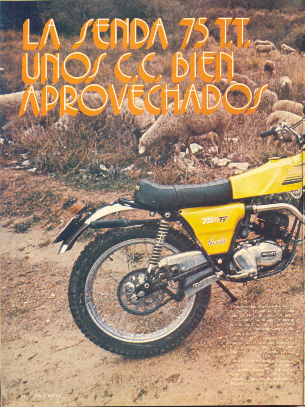 Ducati Senda en espera 0110