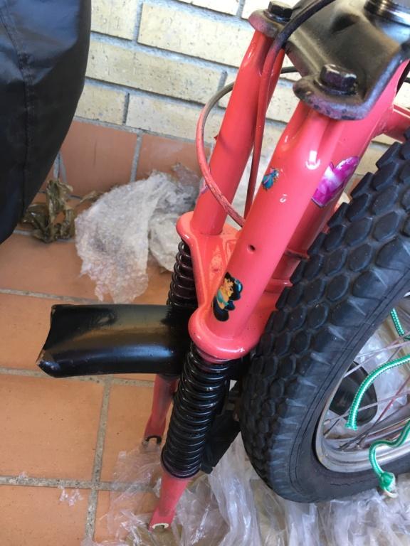 Restauración bicicleta Torrot MX Image014