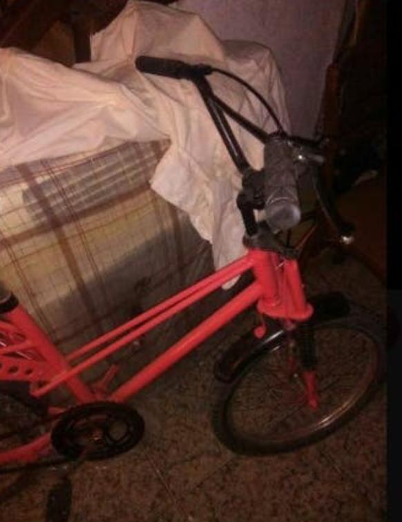 Restauración bicicleta Torrot MX Img_0225
