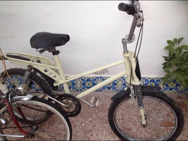 Restauración bicicleta Torrot MX Img_e110
