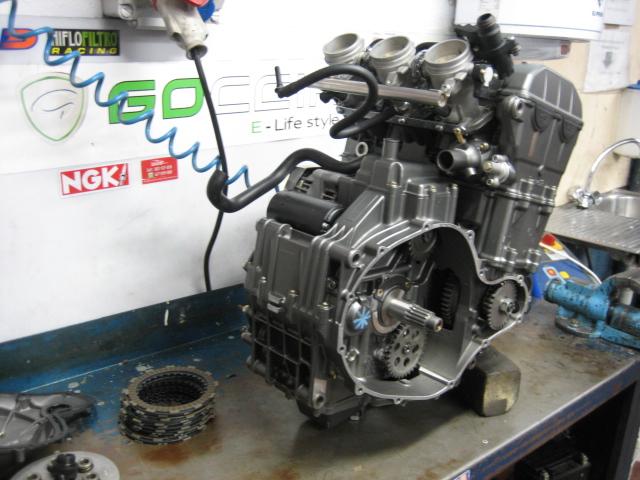 Papá motor Img_6426