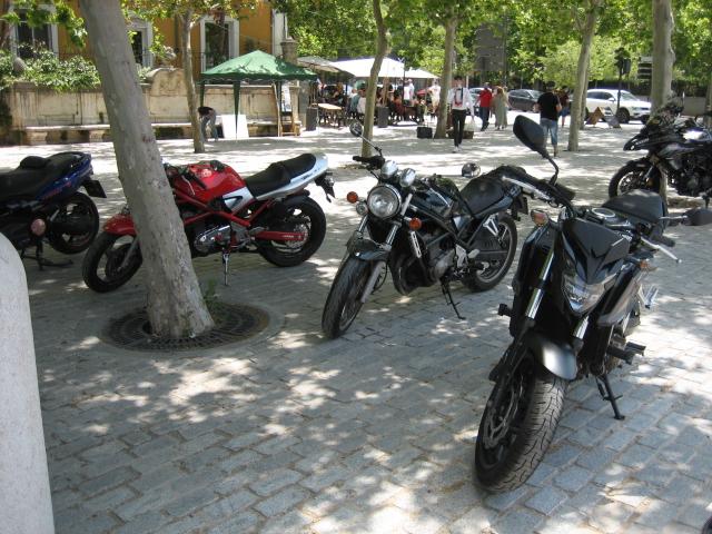 Ruta por la sierra de Madrid y más... Img_7637