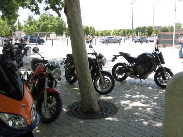 Ruta por la sierra de Madrid y más... Img_7638