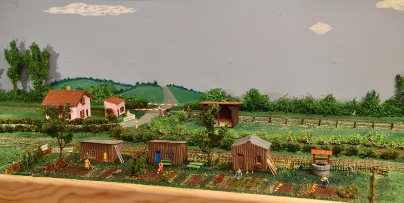 Mes petits jardins ouvriers terminés . Dsc_0125