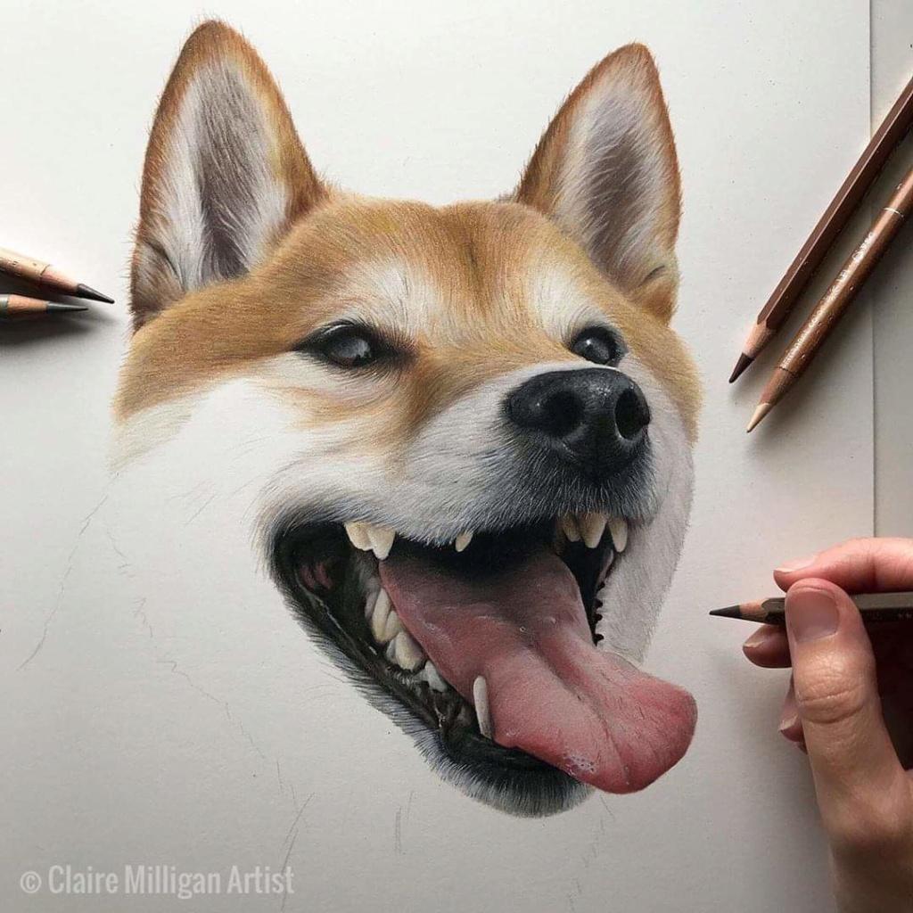 Dibujado a lápiz 70649010