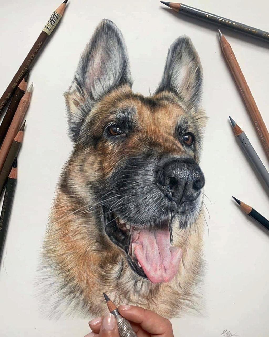 Dibujado a lápiz 78552210