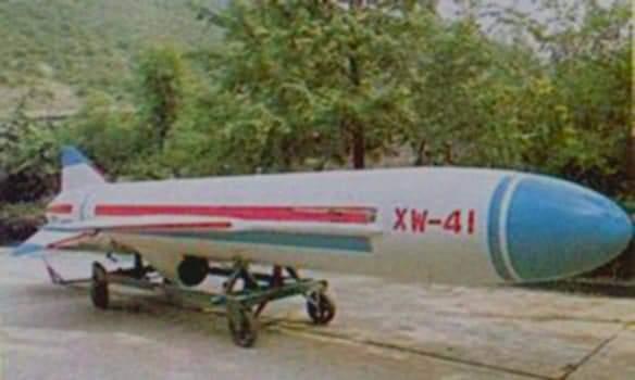 عائلة صواريخ الكروز البحرية المصرية (زجزاج - نصر) Fb_img21