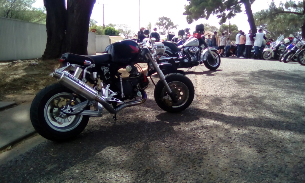 Now Money's Mini Motorcycle Img_2010