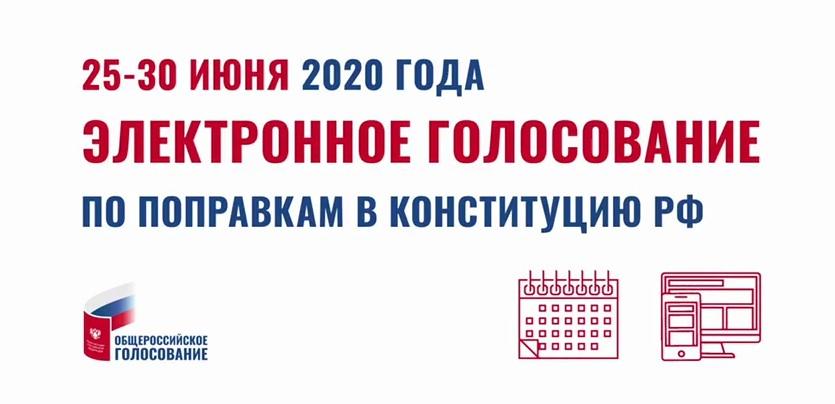 Принять участие в голосовании по поправкам в Конституцию РФ можно, не выходя из дома Yaa10