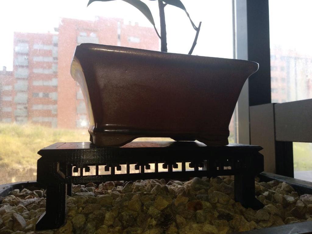 Impresión 3D. Mesa y maceta bonsai  211