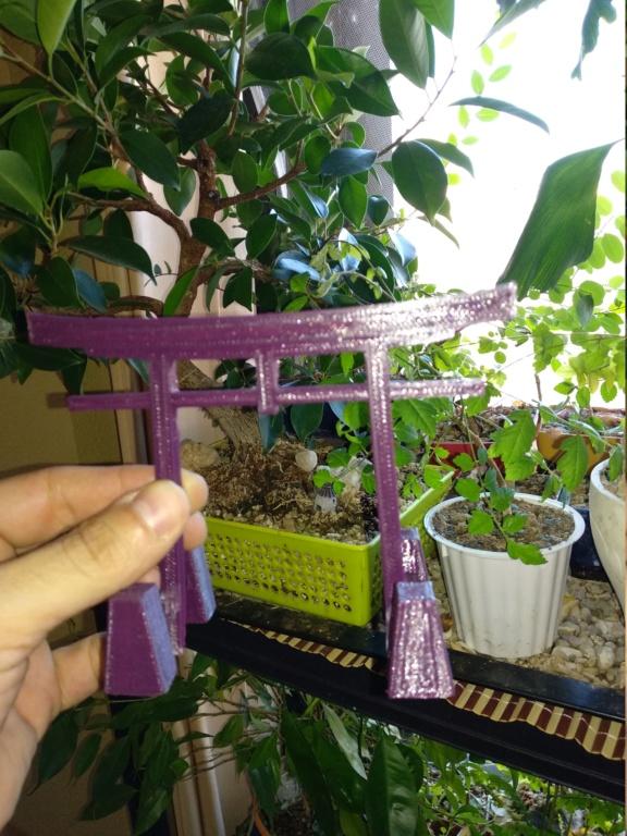 Impresión 3D. Mesa y maceta bonsai  Img_2118