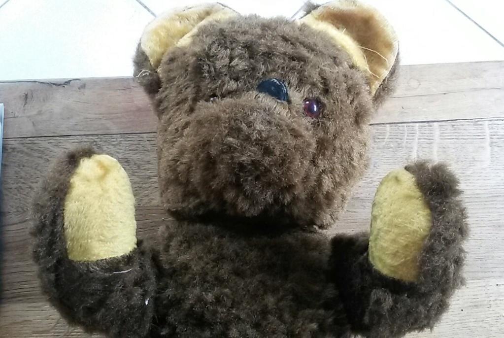 un grand ours en peluche à identifier 20190911