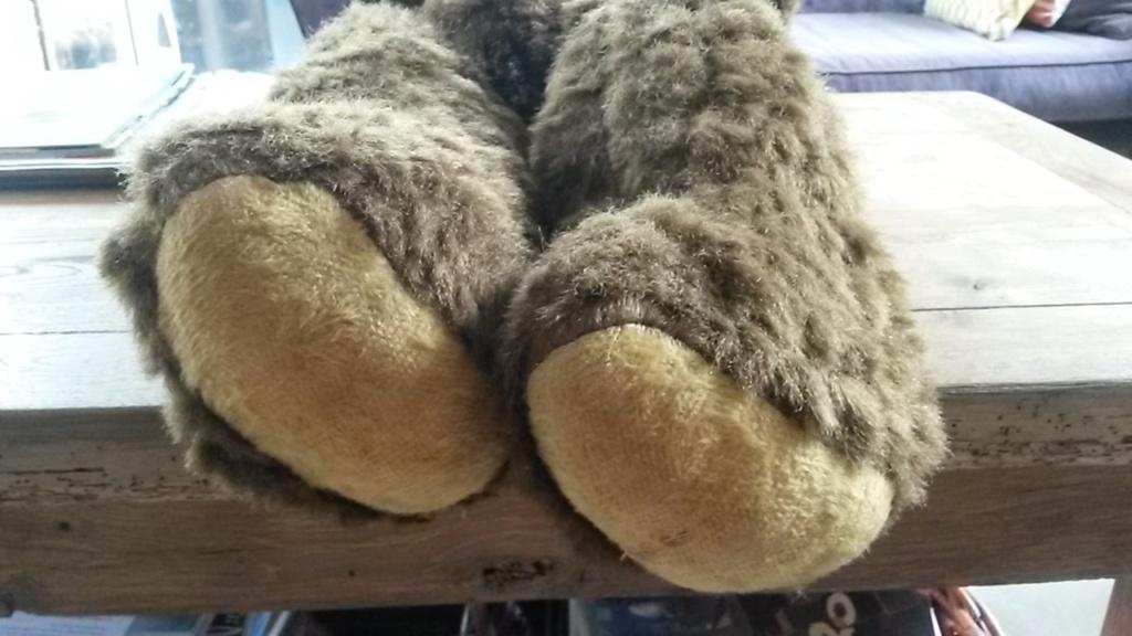 un grand ours en peluche à identifier 20190913