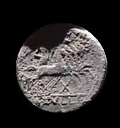 Denario de la gens Tullia. M. TVLLI.  Victoria guiando una cuádriga al galope a dcha. Roma.  15b10