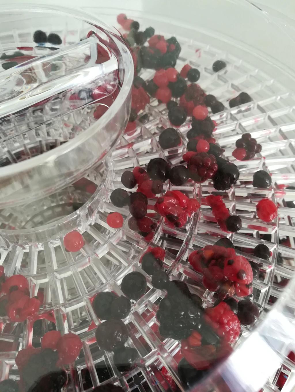 Fabriquer de la poudre de fruits Img_2015