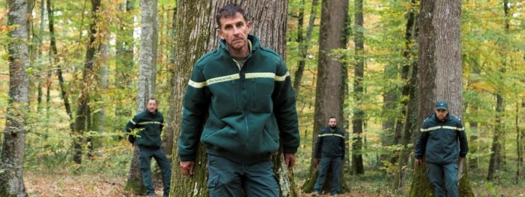 """""""Ce n'est pas une usine à bois"""" : des forestiers manifestent dans l'Allier contre l'""""industrialisation"""" de la forêt 16042910"""