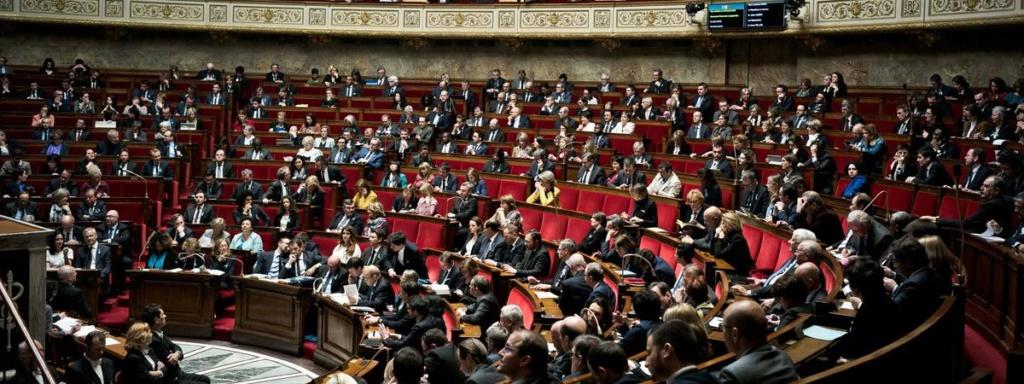 France: des mesures sévères pour les intrusions dans les élevages 17485010