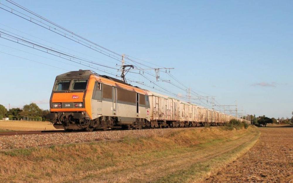 Rungis : le dernier train des primeurs risque de disparaître… au profit des camions 80645310